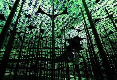 漫步于异次元世界的御台场专门美术馆将于6月开放