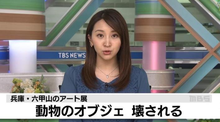兵库·六甲山的艺术展上艺术品遭破坏