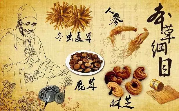 尴尬!日本靠中药赚光全世界的钱,中国人却还在为中西医谁正宗打架 ...