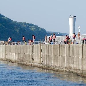 日本支持港湾完善垂钓设施 强化邮轮旅游的体验项目
