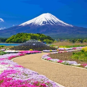 日媒:最新研究表明,日本人的祖先可能并不来自于中国