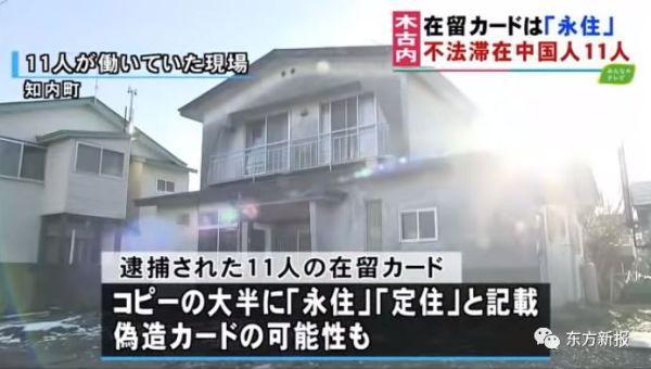 北海道失踪46人中国劳工新疑点:全员提供伪造在留卡复印件?