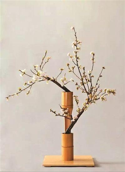 日本花道,是如何把禅意表现得如此唯美的?
