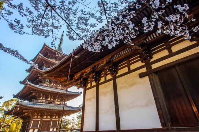 日本奈良 一座唐朝城市在日本的翻版(图)