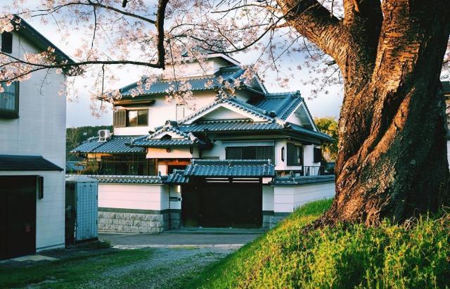 日本民宿的现状:近半数民宿实际由公司运营