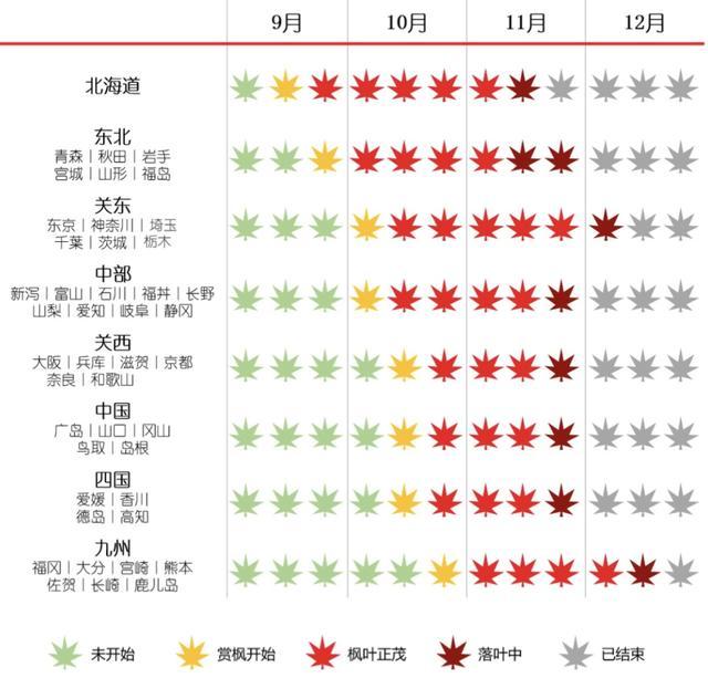你们说,台风过后,日本还能剩下多少红叶?