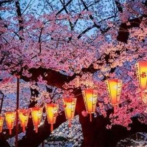 日本在野党动真格的,对安倍晋三展开调查,质疑其滥用公款 ...