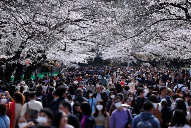 挤爆了!日本人赏樱花、逛街、围观奥运圣火,政府警告不管用 ...