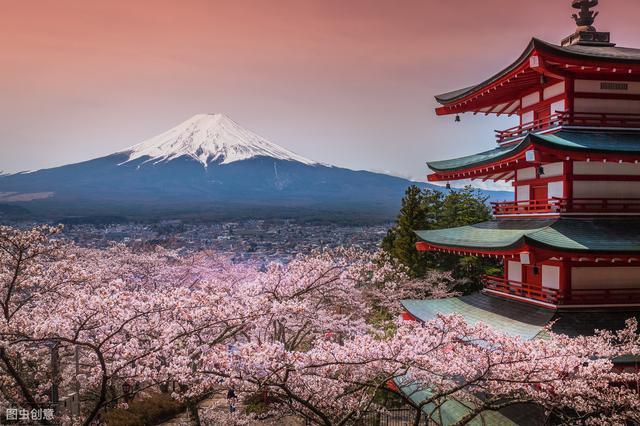 2019年日本最受欢迎的购物网站排行 日本电商从业必看