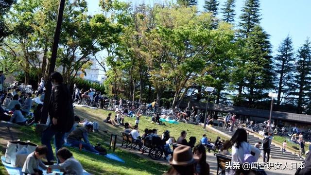 东京世田谷和驹泽公园游人混乱比疫情前增加了120%,日本人自律?