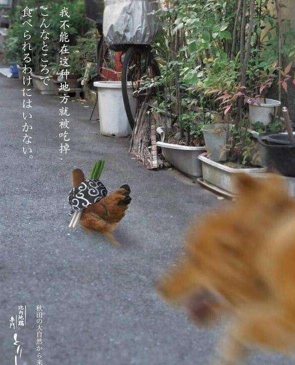 烧鸟,日本的撸串,离不开一只鸡的捧场