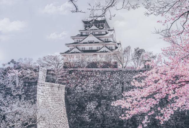 日本政府的一步防疫臭棋:限制永居者再入国,成国际人权法难题