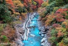 登山+溪谷红叶散步 奥多摩の秋の自然美