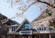东京周末登山|城山〜高尾山纵走(东海自然步道)